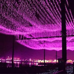 Foxnovo® 220V 8 Modus LED String Lights LED Strip Holiday Lights dekorative Lampen für Hochzeit Weihnachtsfeier (10M 100 LED-Licht, Rosa) -